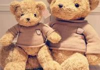 泰迪來啦!熊孩子席捲煙臺,恁布吉島麼?