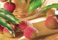 雞嘴荔枝和桂味哪個好 雞嘴荔枝和桂味荔枝的區別