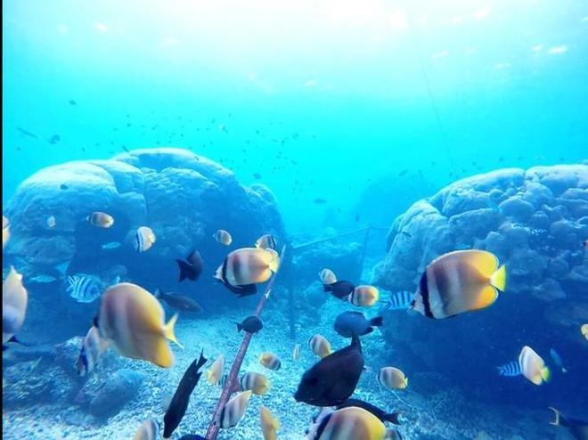永恆記憶 藍夢島之旅 不時會有海浪噴湧拍打下來發出惡魔般的吼聲