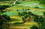 """河南7個小縣城上榜""""中國最美縣域榜單"""",來看看有你的家鄉沒?"""