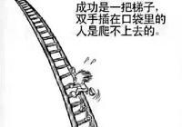 成功就是一把梯子,雙手插在口袋的人是爬不上去的,只有努力向上