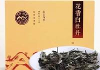 茶葉榜丨花香白牡丹:一款帶有小確幸的白牡丹