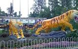 廣州休閒好去處——廣州動物園