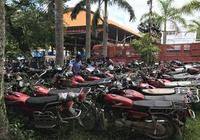 勐臘交警大隊強制銷燬一批報廢車輛