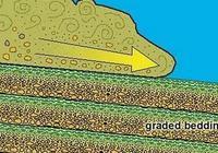 為什麼海底也有泥石流?