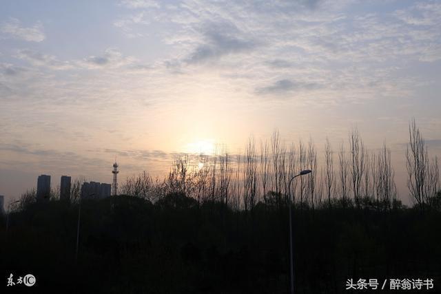 《七律 · 秋夢》(步韻杜甫)文/滄海揚帆