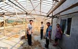 農村養殖場有這3種情況,會被拆除,村幹部的也不行,農民請知曉