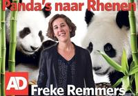 大熊貓熱席捲荷蘭!看荷蘭媒體如何報道?