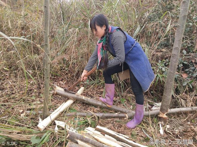 95後彝族姑娘背磚劈柴扛大樹成網紅,會不會成為下一個水泥西施?