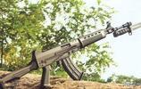 國產丨03式自動步槍;是(中國研製的一種小口徑自動步槍)