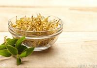 什麼人不能食用金銀花?金銀花的藥用價值及鑑別方法