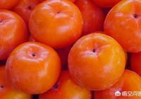 """為什麼柿子裡有""""小舌頭""""?"""