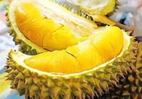 水果之王是什麼水果?