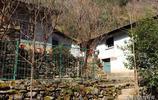 秦嶺略陽武家溝,女主人家說還是農村自在,吃的喝的不用花錢