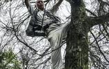 拜讀貴州旅遊局歐陽昌佩老師的一組作品,漲姿勢了