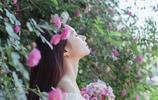 薔薇花開的季節