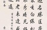慶親王奕劻之孫,書宗趙孟頫,心追手摹60年,90歲高齡還練字