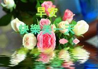 人生有苦有樂,有得有失,有輸有贏。早上好!祝大家平安健康快樂