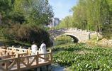 西寧最容易被人忽視的一座公園,風景美離市區很近,遊人卻很少