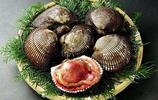 """可降膽固醇和血脂的貝類軟體動物——""""赤貝"""""""