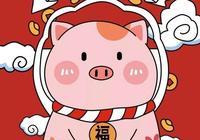 邸永君:豬年說豬