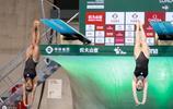 國際泳聯跳水世界系列賽,吳魯賢和王宗源奪冠