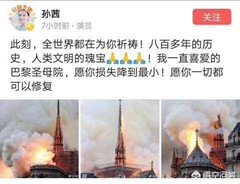 演員牛莉、叢珊、孫茜為巴黎聖母院火災發聲,引發眾多網友質疑,你如何評價?