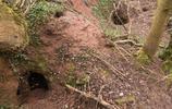 一隻野兔領著他找到700年前地下城堡