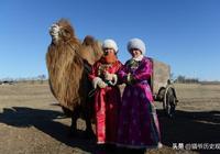 丁零:一個智慧的中國北方古老民族