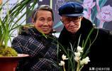浙江展出一盆蘭花,你猜售價多少?網友:不吃不喝我得掙266年