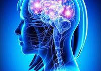 把左右腦融為一體發揮強大能量的極橋法