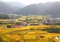 為何潮汕文化更接近閩南最後卻分在了廣東?