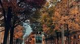 瑞士的秋天,有一種寧靜的美 .