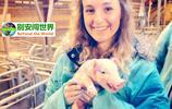 歐洲富裕小國,盛產美女,每年出口的豬佔世界1/4,人均GDP高達30萬元,是全球最清廉國家!