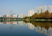 深圳有個以荷花為主題公園,不僅免費每年花開時期,吸引大量遊客