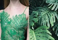 服裝設計 · 來自大自然的靈感
