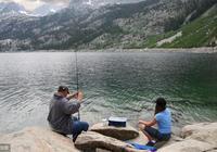 我的野外垂釣經驗:常見魚種的吃餌習慣、釣點選擇、釣法運用