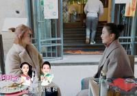 小S開花店的失利,折射出後《康熙》時代臺灣綜藝人在內地的困境