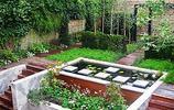 庭院設計:兩個有荷花池的庭院,一池荷花美了一整個庭院