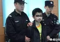 12歲小學生弒母后,他的父親說:孩子太小,不懂事,對此你怎麼看?