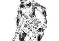 六耳獼猴與孫悟空法力相當,六耳獼猴又是誰的徒弟?