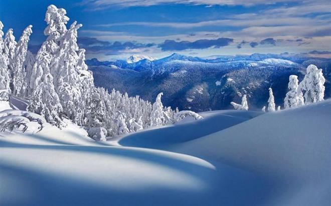 皚皚的白雪
