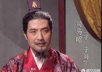三國時,為什麼司馬昭要殺鄧艾和鍾會?