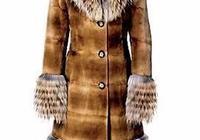 貂皮大衣可以用吸塵器清理嗎?