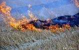甘肅農村一直用柴火做飯,為什麼空氣質量這麼好,你知道原因嗎?