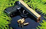 這些漂亮的槍,一看就是好槍