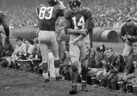 前NFL最有價值球員蒂特去世