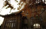 高校風光之武漢大學