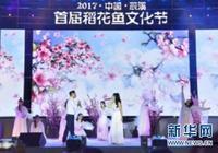 湖南辰溪縣舉辦首屆稻花魚文化節