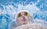 汪順獲全國游泳冠軍賽男子400米混合泳冠軍